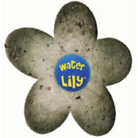 Accessoires piscine - Water Lily